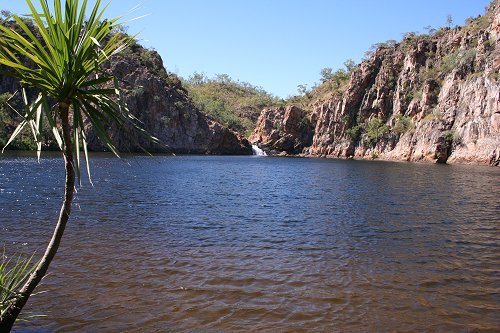 The swimming hole at Edith Falls
