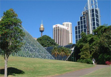 The Botanical Gardens, Sydney