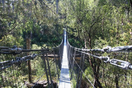 Huon Rope Bridge