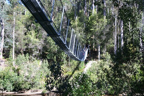Picton Rope Bridge