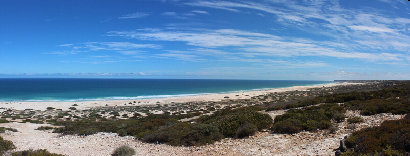Nullarbor coast